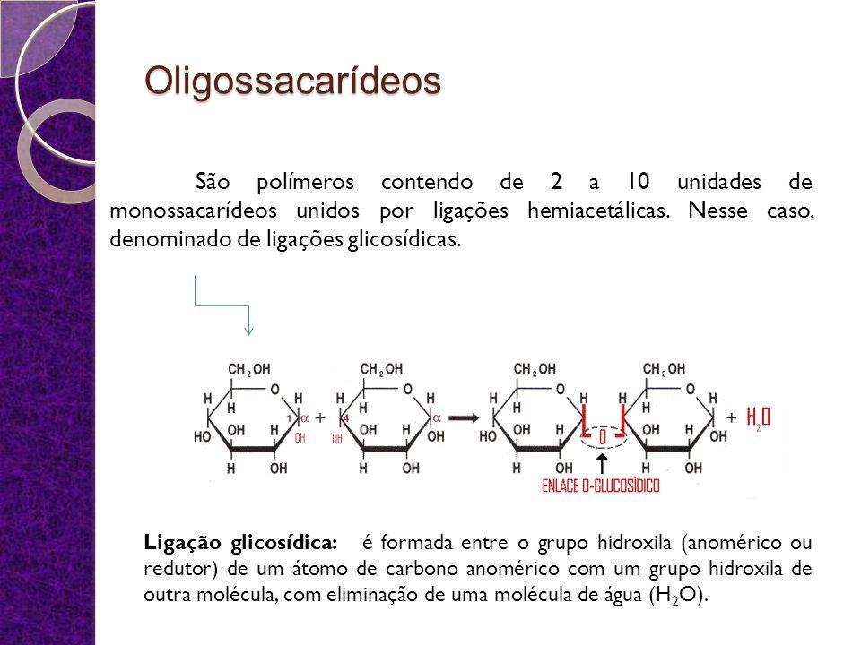 Oligossacarídeos Dissacarídeos Redutores Maltose (A) Celobiose Lactose Isomaltose Não redutores Sacarose (B) Trealose 23 Outros: Trissacarídeos: Rafinose Tetrassacarídeo: Estaquiose