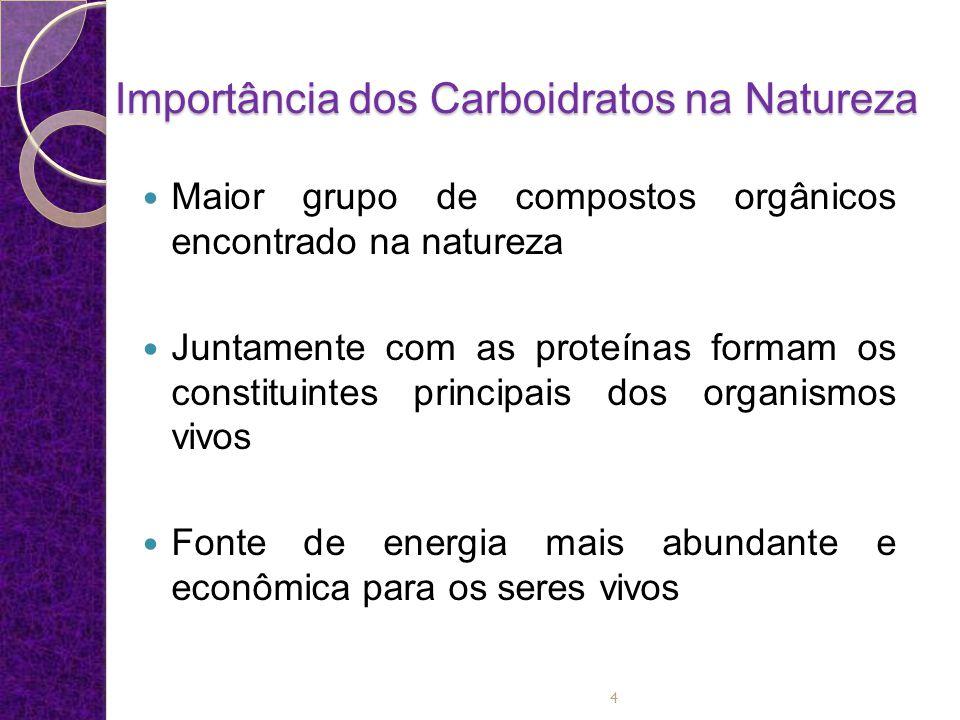 Importância dos Carboidratos na Natureza Fonte de Energia: uma das principais funções dos carboidratos é fornecer energia para o desenvolvimento e manutenção das funções celulares, sendo que as reservas de glicogênio promovem um equilíbrio no organismo pela geração de ATP (adenosina tri-fosfato).