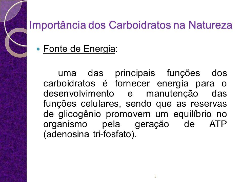 Importância dos Carboidratos na Natureza Reserva de energia: um nível adequado de carboidratos na dieta impede que ocorra uma degradação das proteínas para geração de energia.