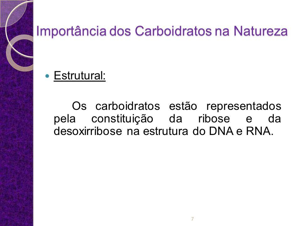 Importância dos Carboidratos na Natureza Combustível para o sistema nervoso central: é de conhecimento geral que o tecido cerebral alimenta-se quase que exclusivamente de glicose.