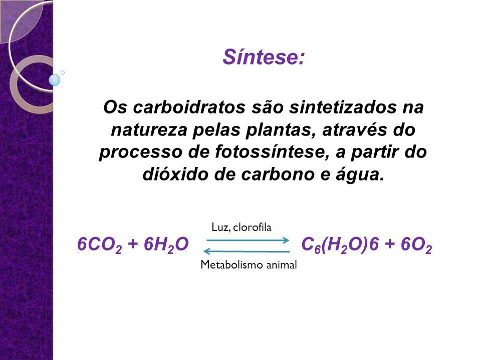 Frutas6 a 12% de glicose e frutose Milho e batata15% de amido Trigo60% de amido Farinha de trigo70% de amido Condimentos9-39% açúcares redutores Açúcar branco comercial 99,5% de sacarose Açúcar de milho87,5% de glicose Mel75% de glicose e frutose Conteúdo de carboidrato nos alimentos 10