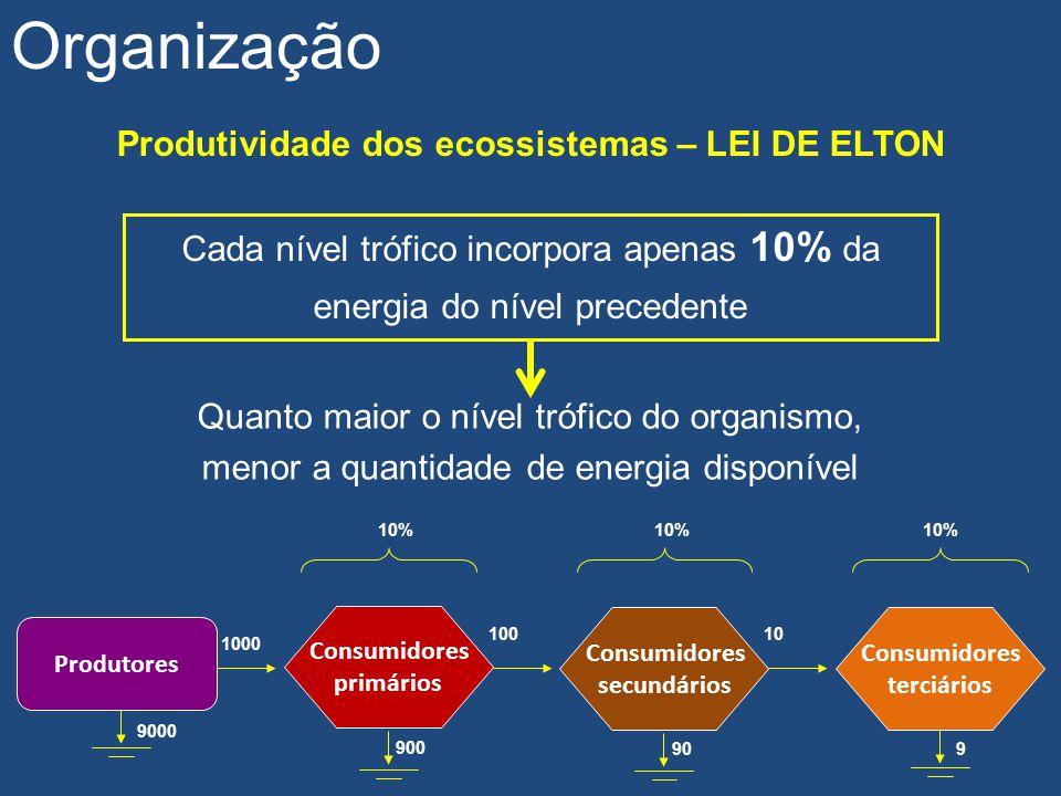 Produtividade dos ecossistemas – LEI DE ELTON Organização Cada nível trófico incorpora apenas 10% da energia do nível precedente Quanto maior o nível
