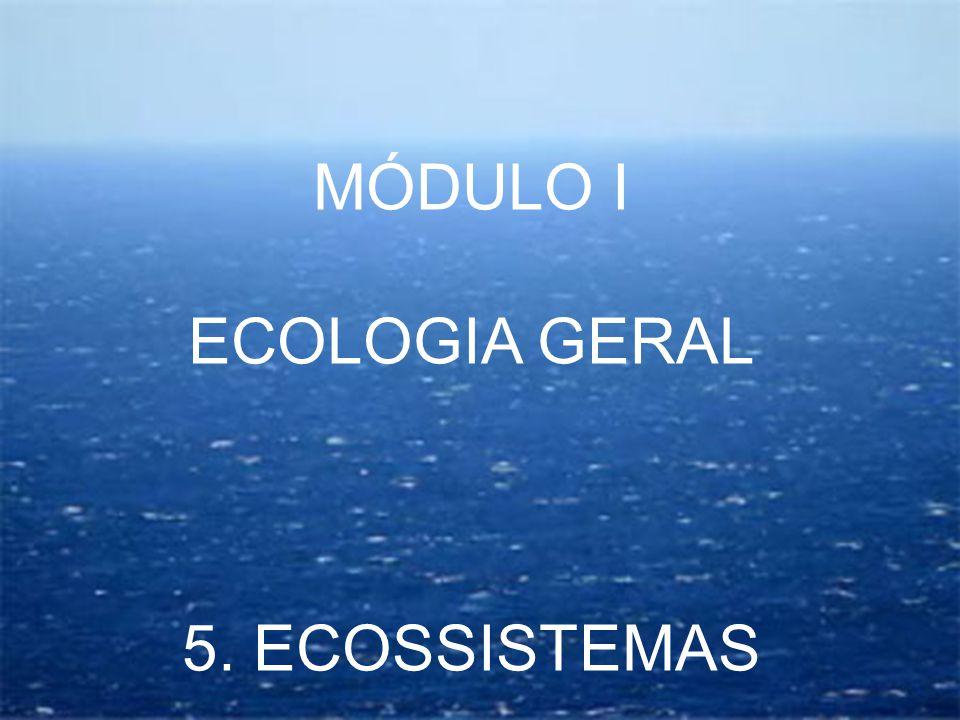 Ecossistema Um conjunto de seres vivos que interagem entre si e com o meio natural, de forma equilibrada, por meio da RECICLAGEM DE MATÉRIA e do USO EFICIENTE DE ENERGIA SOLAR FATORES BIOLÓGICOS (elementos bióticos) FATORES FÍSICOS (elementos abióticos) Unidade funcional básica, composta de uma BIOCENOSE (seres vivos) e um BIÓTIPO (ambiente)