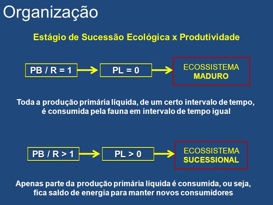 Estágio de Sucessão Ecológica x Produtividade Organização PB / R = 1 PL = 0 ECOSSISTEMA MADURO PB / R > 1 PL > 0 ECOSSISTEMA SUCESSIONAL Toda a produç