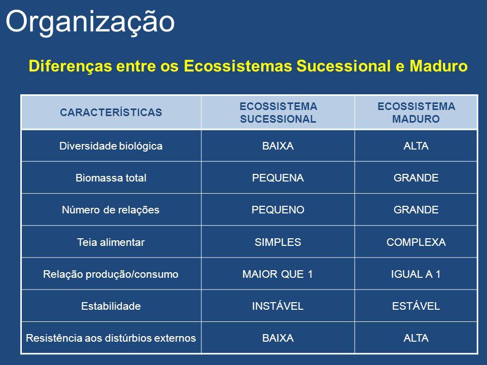 Diferenças entre os Ecossistemas Sucessional e Maduro Organização CARACTERÍSTICAS ECOSSISTEMA SUCESSIONAL ECOSSISTEMA MADURO Diversidade biológicaBAIX