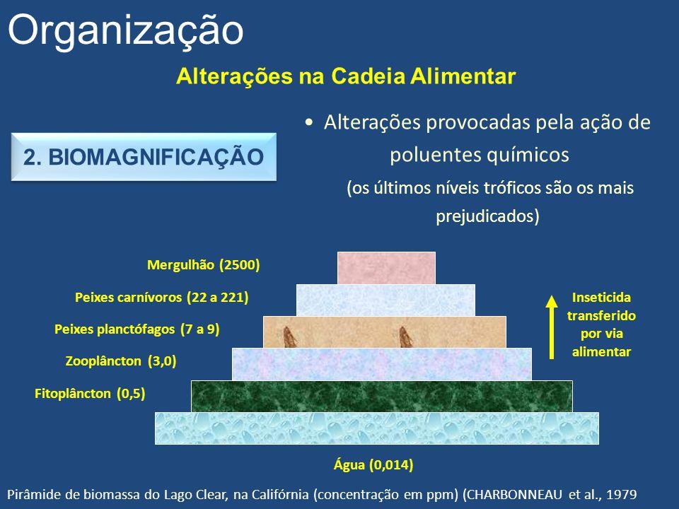 Alterações na Cadeia Alimentar Organização 2. BIOMAGNIFICAÇÃO Alterações provocadas pela ação de poluentes químicos (os últimos níveis tróficos são os