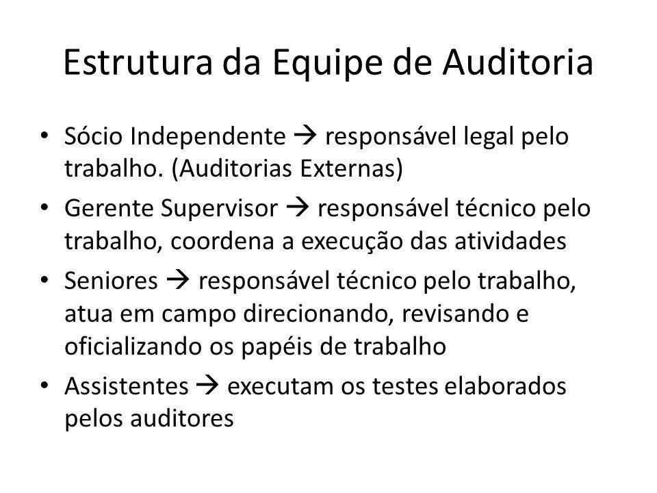 Estrutura da Equipe de Auditoria Sócio Independente responsável legal pelo trabalho. (Auditorias Externas) Gerente Supervisor responsável técnico pelo