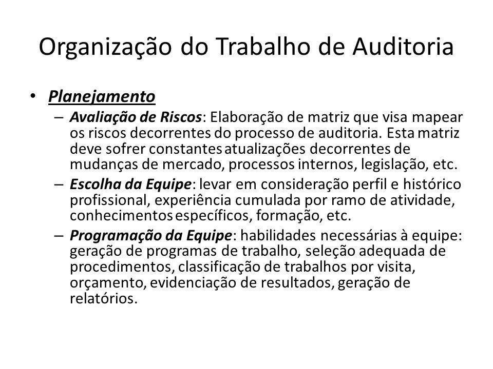 Organização do Trabalho de Auditoria Planejamento – Avaliação de Riscos: Elaboração de matriz que visa mapear os riscos decorrentes do processo de aud