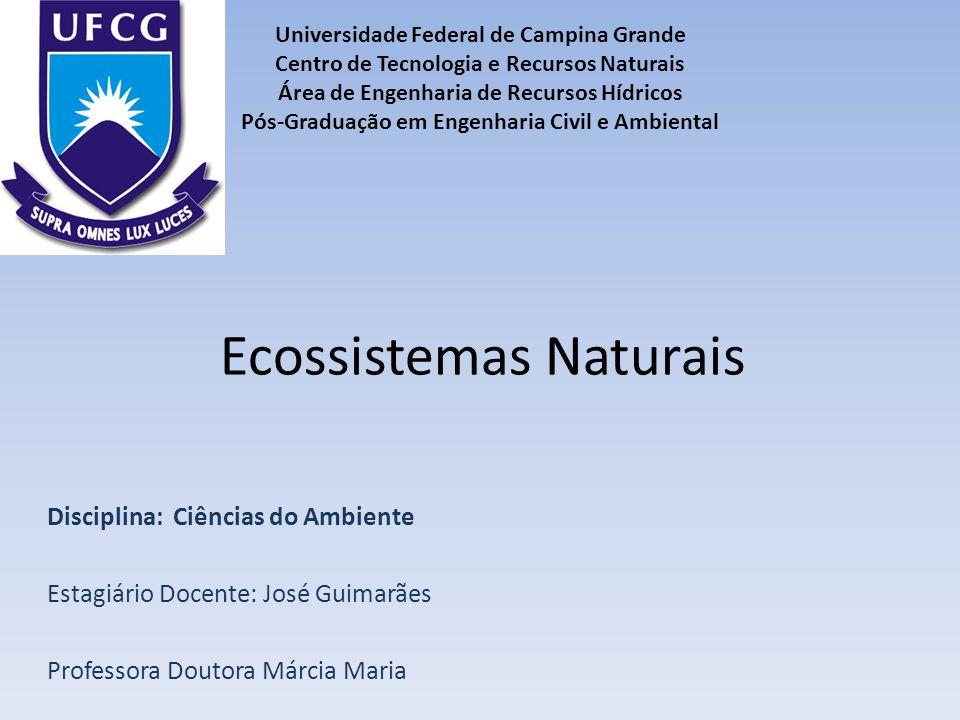 Ecossistemas Naturais Disciplina: Ciências do Ambiente Estagiário Docente: José Guimarães Professora Doutora Márcia Maria Universidade Federal de Camp