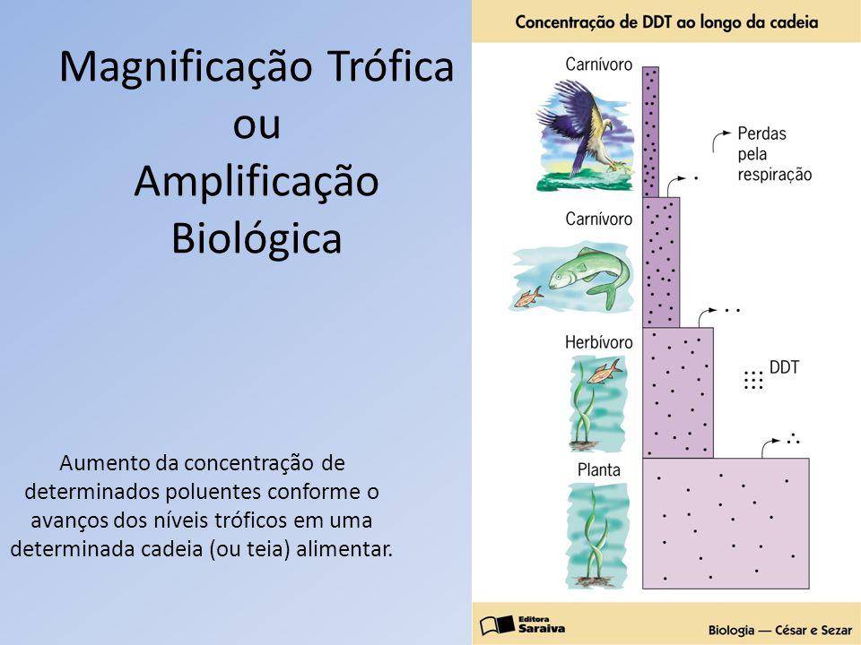 Magnificação Trófica ou Amplificação Biológica Aumento da concentração de determinados poluentes conforme o avanços dos níveis tróficos em uma determi