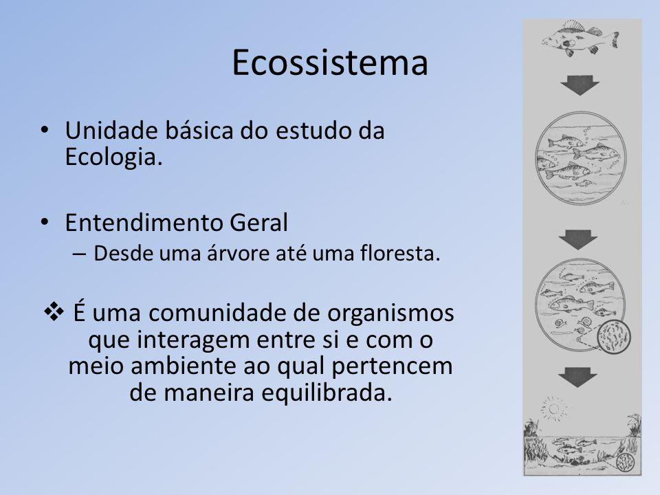 Ecossistema Unidade básica do estudo da Ecologia. Entendimento Geral – Desde uma árvore até uma floresta. É uma comunidade de organismos que interagem