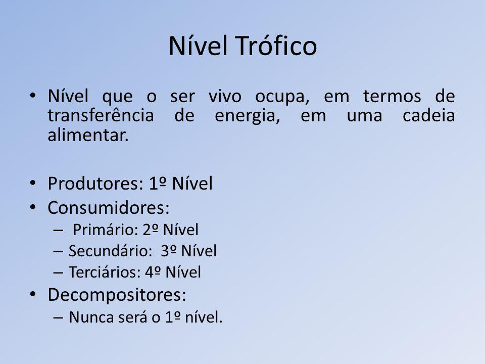 Nível Trófico Nível que o ser vivo ocupa, em termos de transferência de energia, em uma cadeia alimentar. Produtores: 1º Nível Consumidores: – Primári