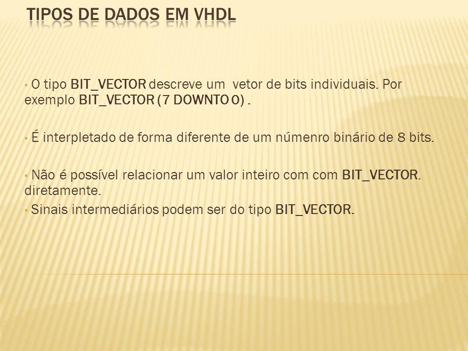O tipo BIT_VECTOR descreve um vetor de bits individuais.