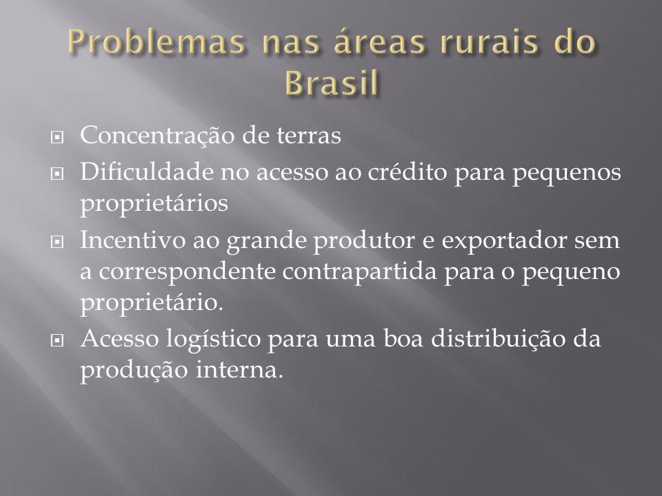 Concentração de terras Dificuldade no acesso ao crédito para pequenos proprietários Incentivo ao grande produtor e exportador sem a correspondente contrapartida para o pequeno proprietário.