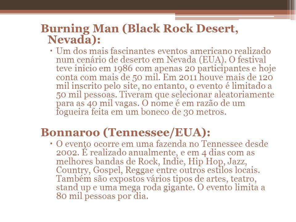 Burning Man (Black Rock Desert, Nevada): Um dos mais fascinantes eventos americano realizado num cenário de deserto em Nevada (EUA). O festival teve i
