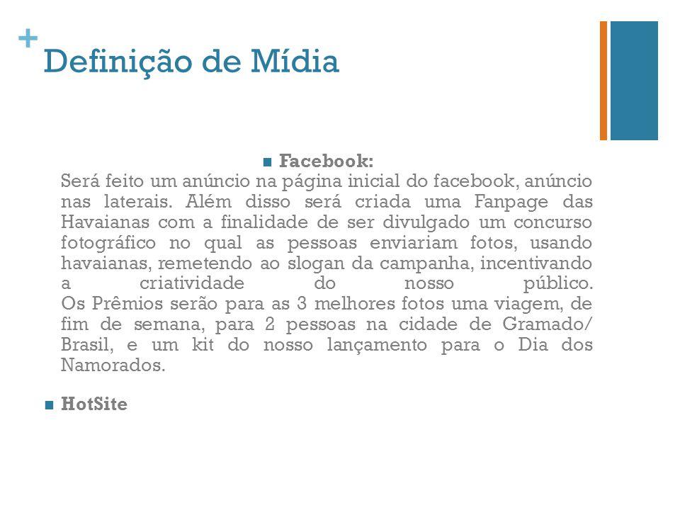 + Definição de Mídia Facebook: Será feito um anúncio na página inicial do facebook, anúncio nas laterais. Além disso será criada uma Fanpage das Havai