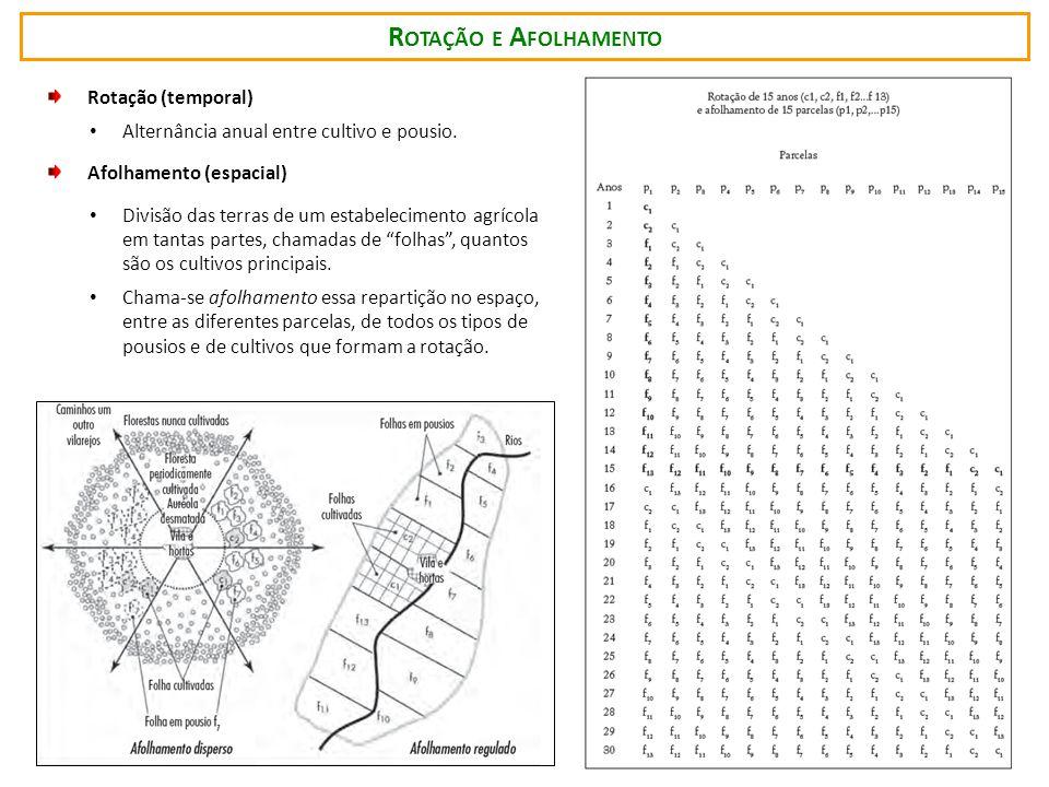 R OTAÇÃO E A FOLHAMENTO Rotação (temporal) Alternância anual entre cultivo e pousio.