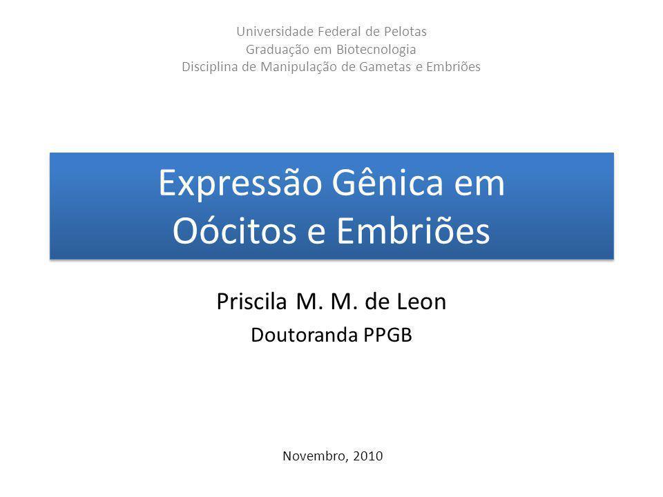 Expressão Gênica em Oócitos e Embriões Priscila M. M. de Leon Doutoranda PPGB Novembro, 2010 Universidade Federal de Pelotas Graduação em Biotecnologi
