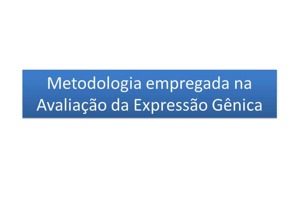 Metodologia empregada na Avaliação da Expressão Gênica