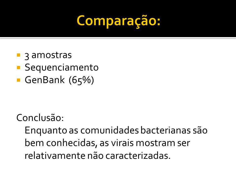 3 amostras Sequenciamento GenBank (65%) Conclusão: Enquanto as comunidades bacterianas são bem conhecidas, as virais mostram ser relativamente não car