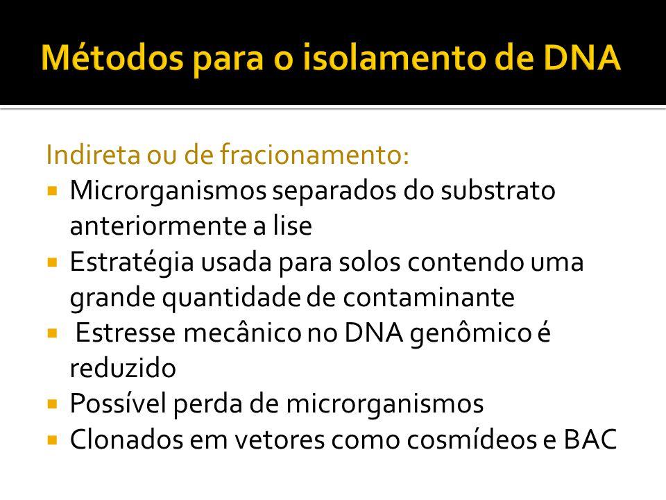 Indireta ou de fracionamento: Microrganismos separados do substrato anteriormente a lise Estratégia usada para solos contendo uma grande quantidade de
