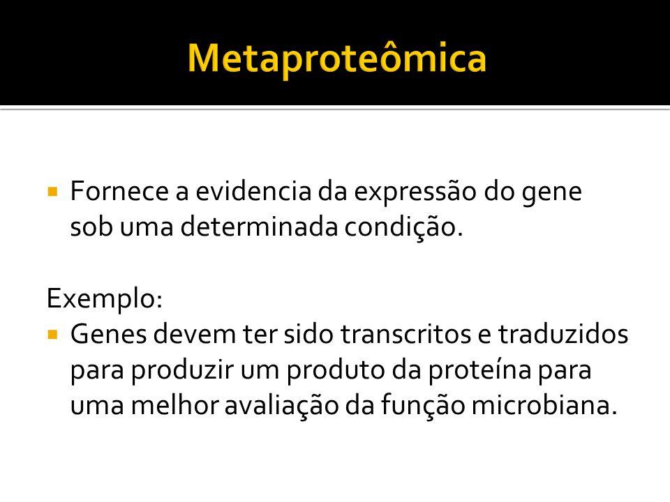 Fornece a evidencia da expressão do gene sob uma determinada condição. Exemplo: Genes devem ter sido transcritos e traduzidos para produzir um produto