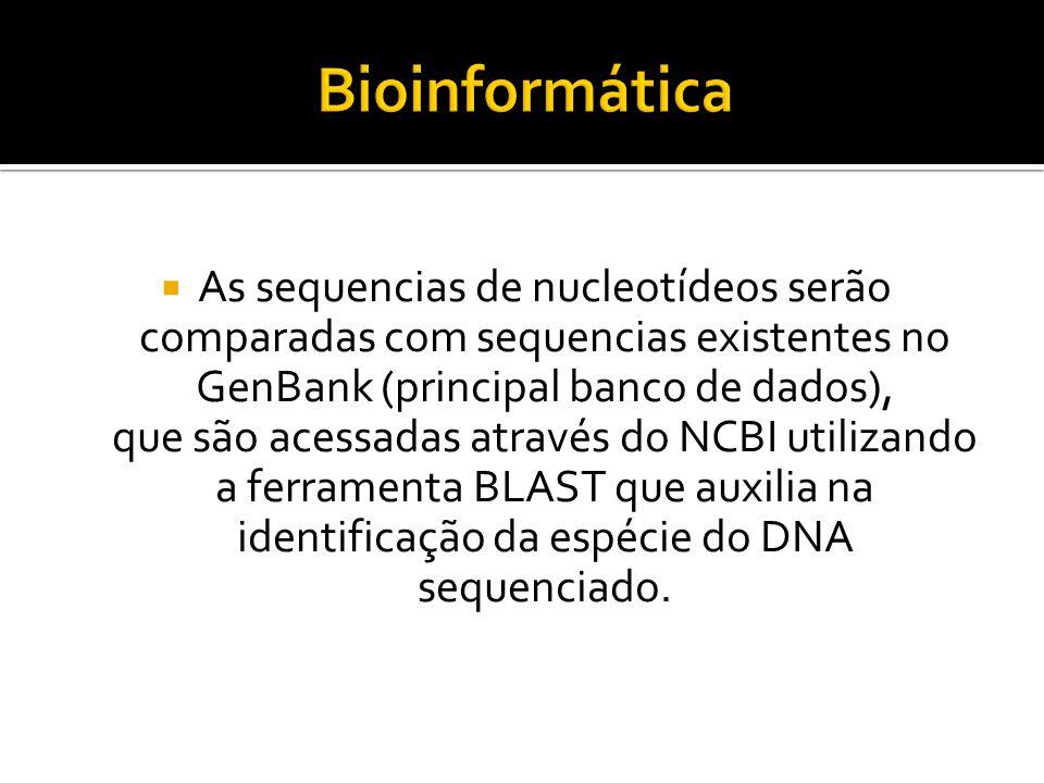 As sequencias de nucleotídeos serão comparadas com sequencias existentes no GenBank (principal banco de dados), que são acessadas através do NCBI util