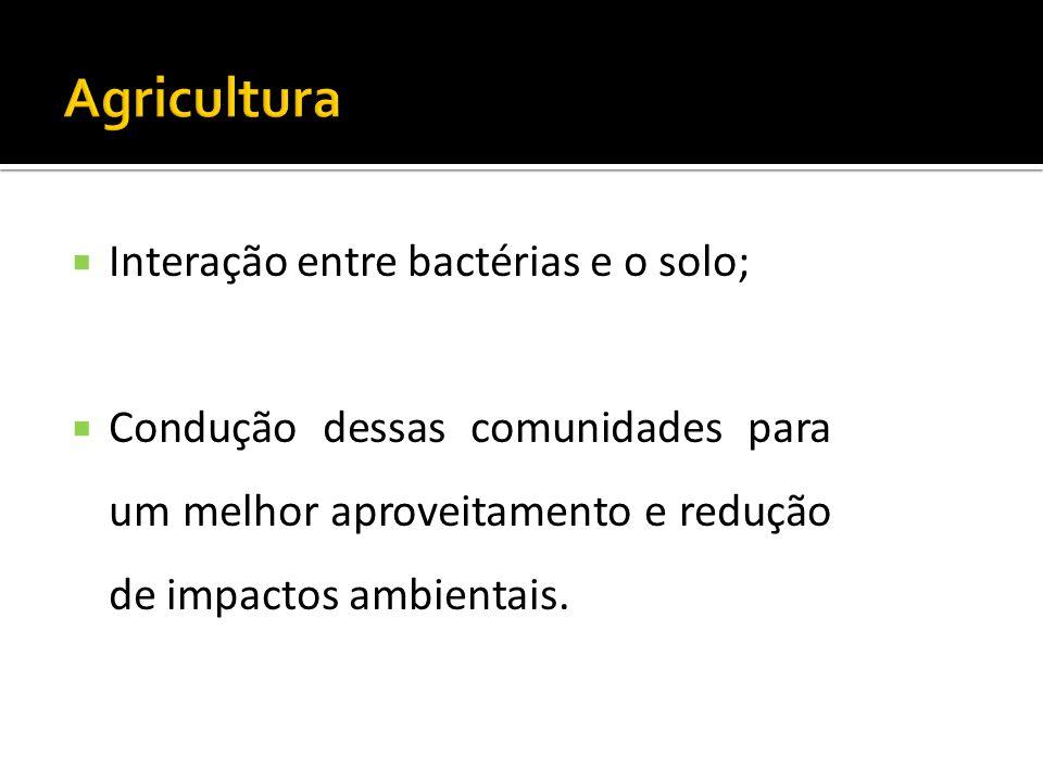 Interação entre bactérias e o solo; Condução dessas comunidades para um melhor aproveitamento e redução de impactos ambientais.