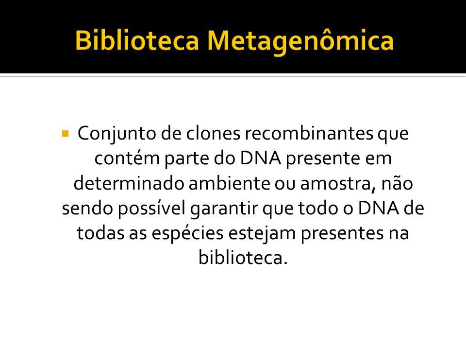 Conjunto de clones recombinantes que contém parte do DNA presente em determinado ambiente ou amostra, não sendo possível garantir que todo o DNA de to