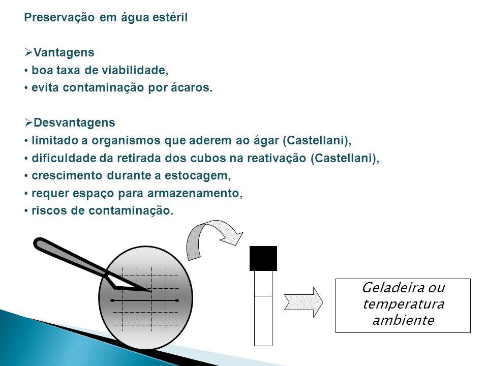 Preservação em água estéril Vantagens boa taxa de viabilidade, evita contaminação por ácaros. Desvantagens limitado a organismos que aderem ao ágar (C