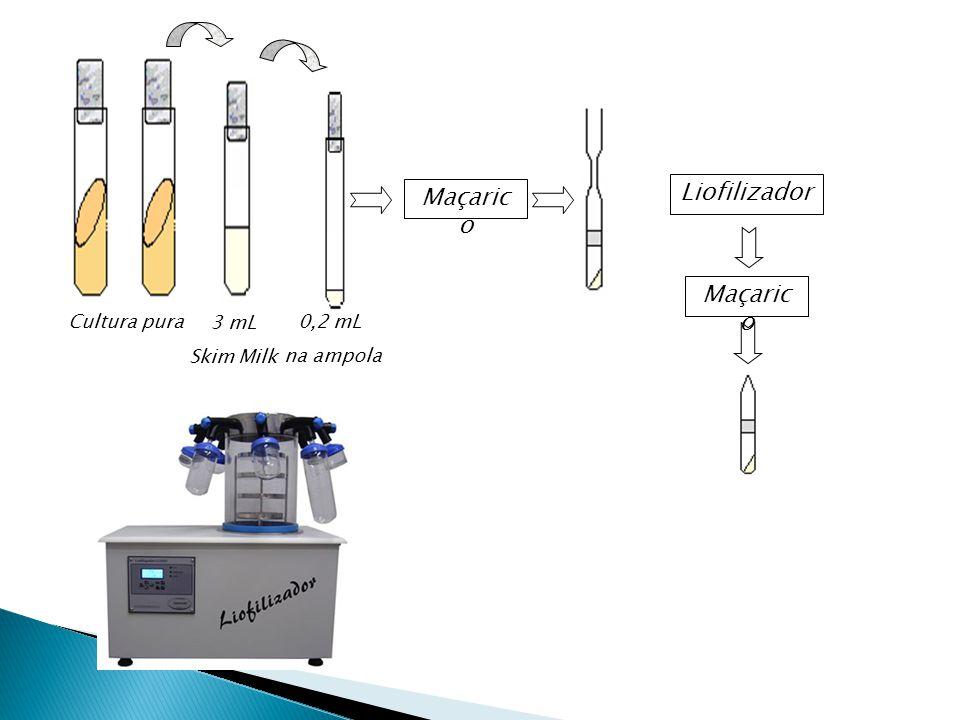 3 mL Skim Milk Cultura pura 0,2 mL na ampola Maçaric o Liofilizador Maçaric o