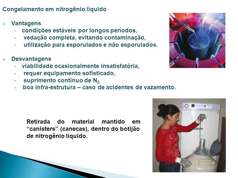 Congelamento em nitrogênio líquido Vantagens condições estáveis por longos períodos, vedação completa, evitando contaminação, utilização para esporula
