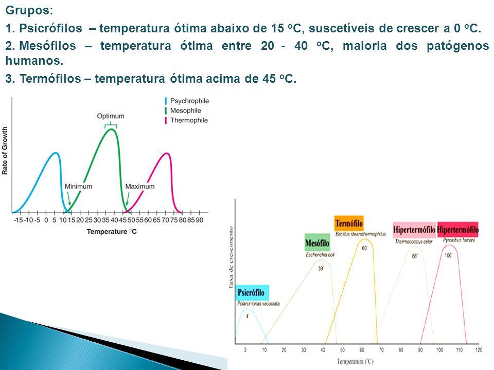 Grupos: 1. Psicrófilos – temperatura ótima abaixo de 15 o C, suscetíveis de crescer a 0 o C. 2. Mesófilos – temperatura ótima entre 20 - 40 o C, maior