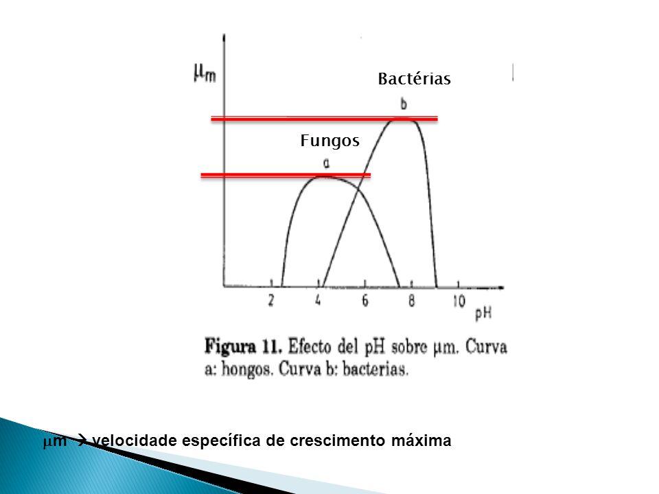 Fungos Bactérias m velocidade específica de crescimento máxima