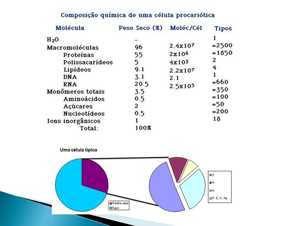 m velocidade específica de crescimento máxima Ponto de máximo crescimento do microrganismo