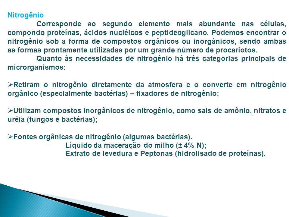 Nitrogênio Corresponde ao segundo elemento mais abundante nas células, compondo proteínas, ácidos nucléicos e peptideoglicano. Podemos encontrar o nit