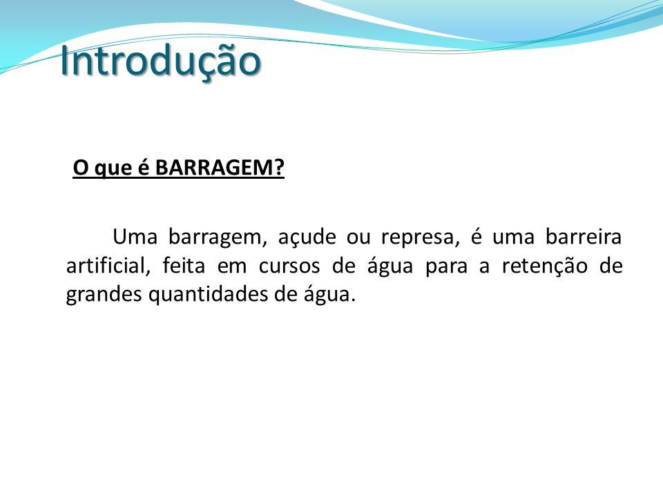 Brasil, maior produtor de hidroeletricidade da América Latina, possui aproximadamente 600 barragens e está planejada a construção de 432 novas barragens até 2015, principalmente na bacia do rio Tocantins, na Amazônia e na região Sul [Silva (2001)].