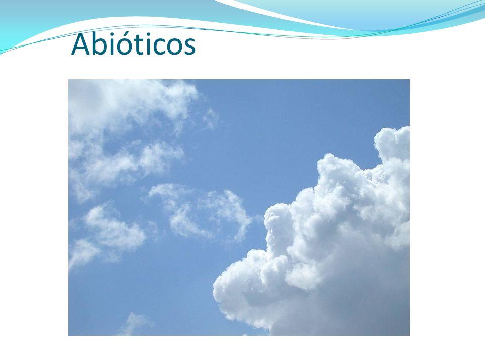 Abióticos