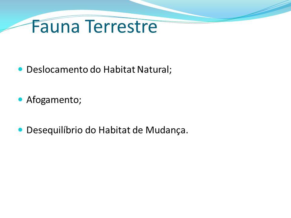 Fauna Terrestre Deslocamento do Habitat Natural; Afogamento; Desequilíbrio do Habitat de Mudança.