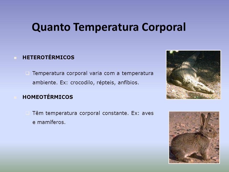 Quanto Temperatura Corporal HETEROTÉRMICOS Temperatura corporal varia com a temperatura ambiente.