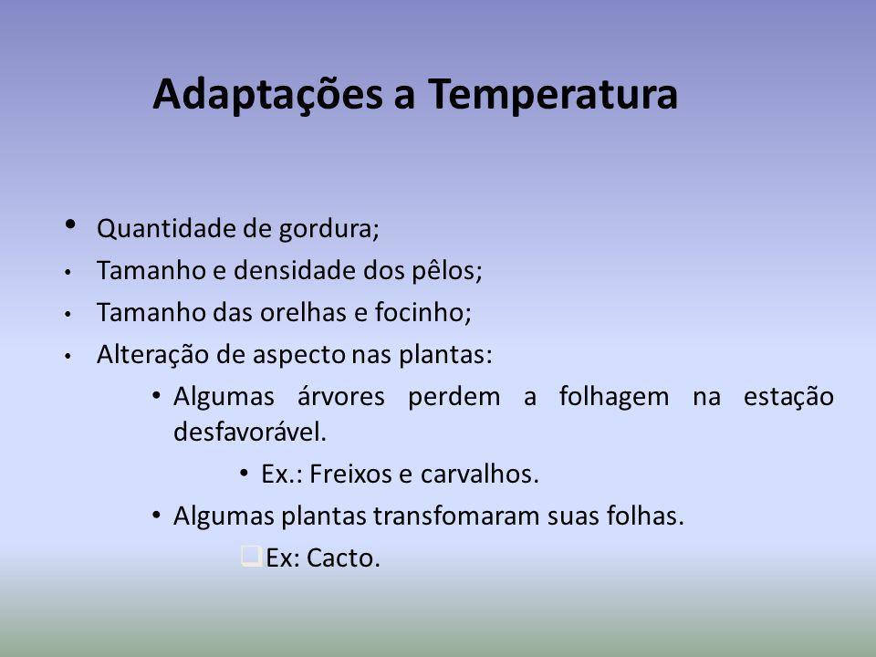 Adaptações a Temperatura Quantidade de gordura; Tamanho e densidade dos pêlos; Tamanho das orelhas e focinho; Alteração de aspecto nas plantas: Algumas árvores perdem a folhagem na estação desfavorável.