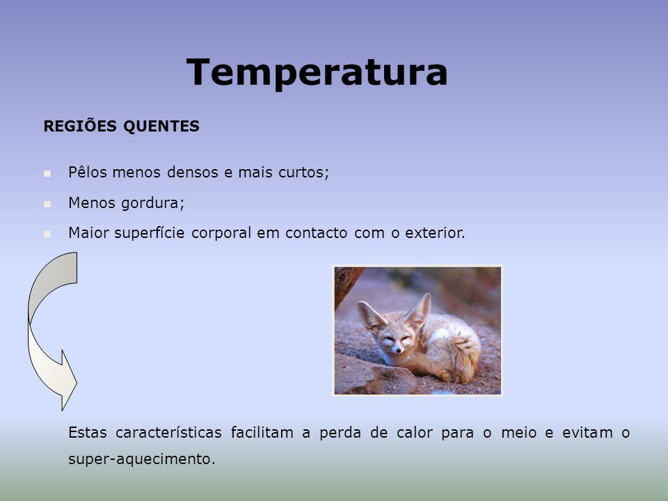 Temperatura REGIÕES QUENTES Pêlos menos densos e mais curtos; Menos gordura; Maior superfície corporal em contacto com o exterior.