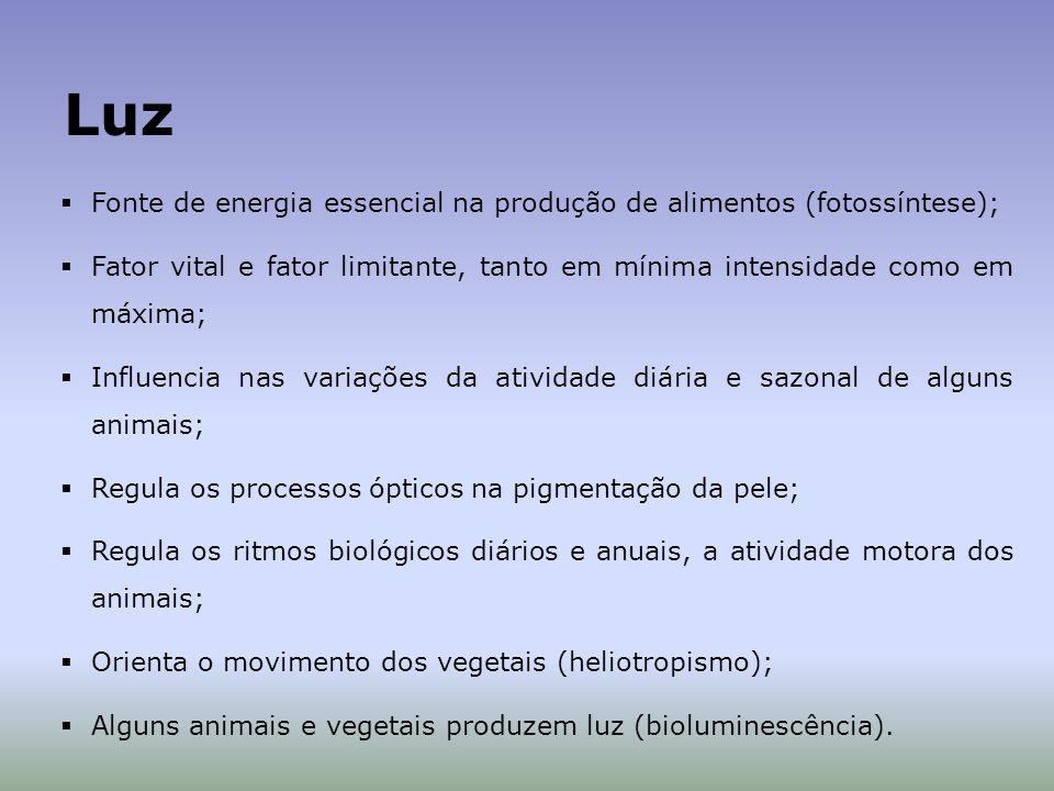 Fonte de energia essencial na produção de alimentos (fotossíntese); Fator vital e fator limitante, tanto em mínima intensidade como em máxima; Influencia nas variações da atividade diária e sazonal de alguns animais; Regula os processos ópticos na pigmentação da pele; Regula os ritmos biológicos diários e anuais, a atividade motora dos animais; Orienta o movimento dos vegetais (heliotropismo); Alguns animais e vegetais produzem luz (bioluminescência).
