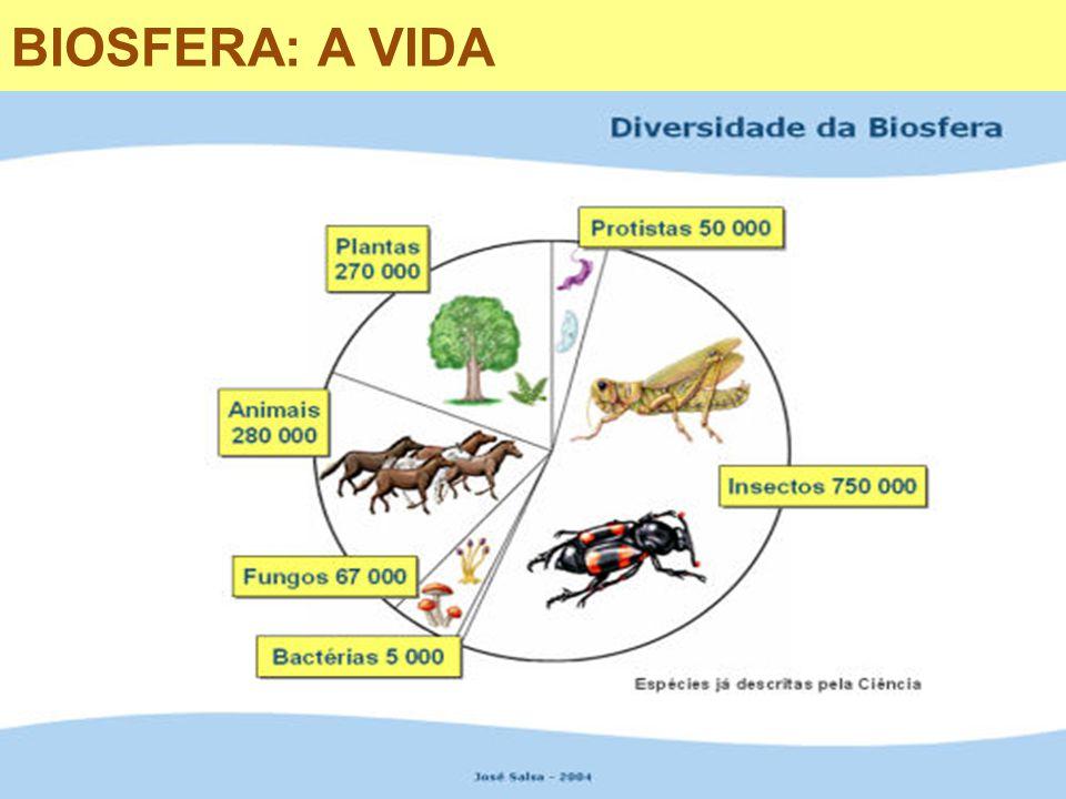 BIOSFERA: A VIDA