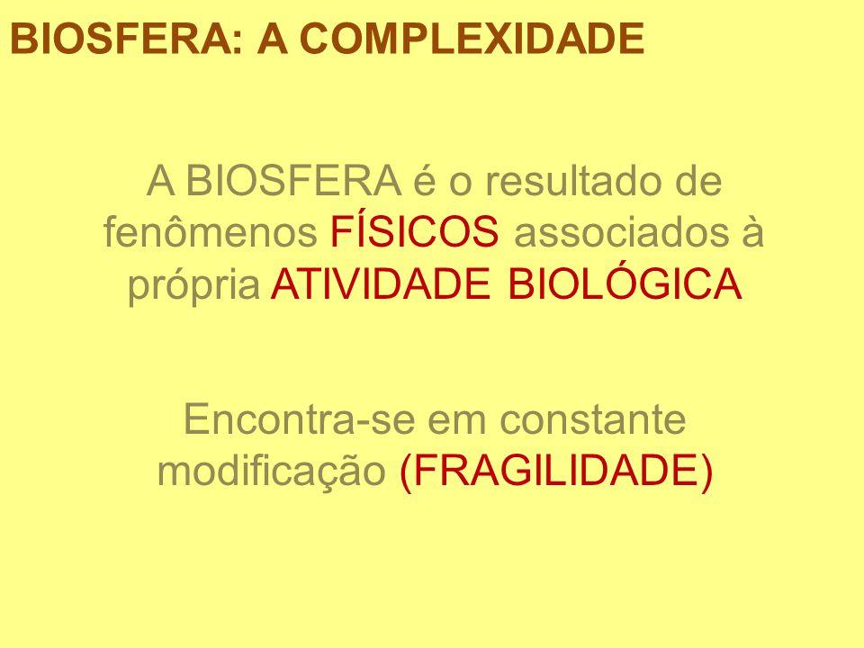 BIOSFERA: A COMPLEXIDADE A BIOSFERA é o resultado de fenômenos FÍSICOS associados à própria ATIVIDADE BIOLÓGICA Encontra-se em constante modificação (