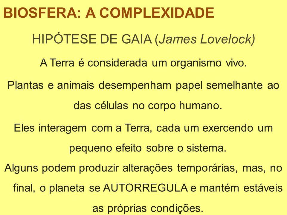 HIPÓTESE DE GAIA (James Lovelock) A Terra é considerada um organismo vivo. Plantas e animais desempenham papel semelhante ao das células no corpo huma