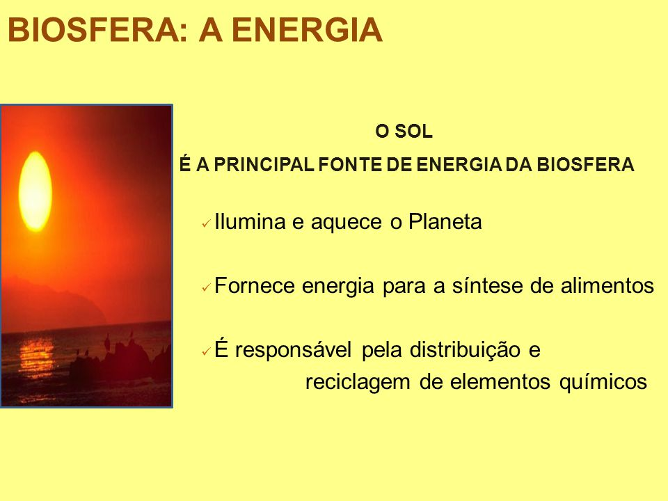 BIOSFERA: A ENERGIA O SOL É A PRINCIPAL FONTE DE ENERGIA DA BIOSFERA Ilumina e aquece o Planeta Fornece energia para a síntese de alimentos É responsá