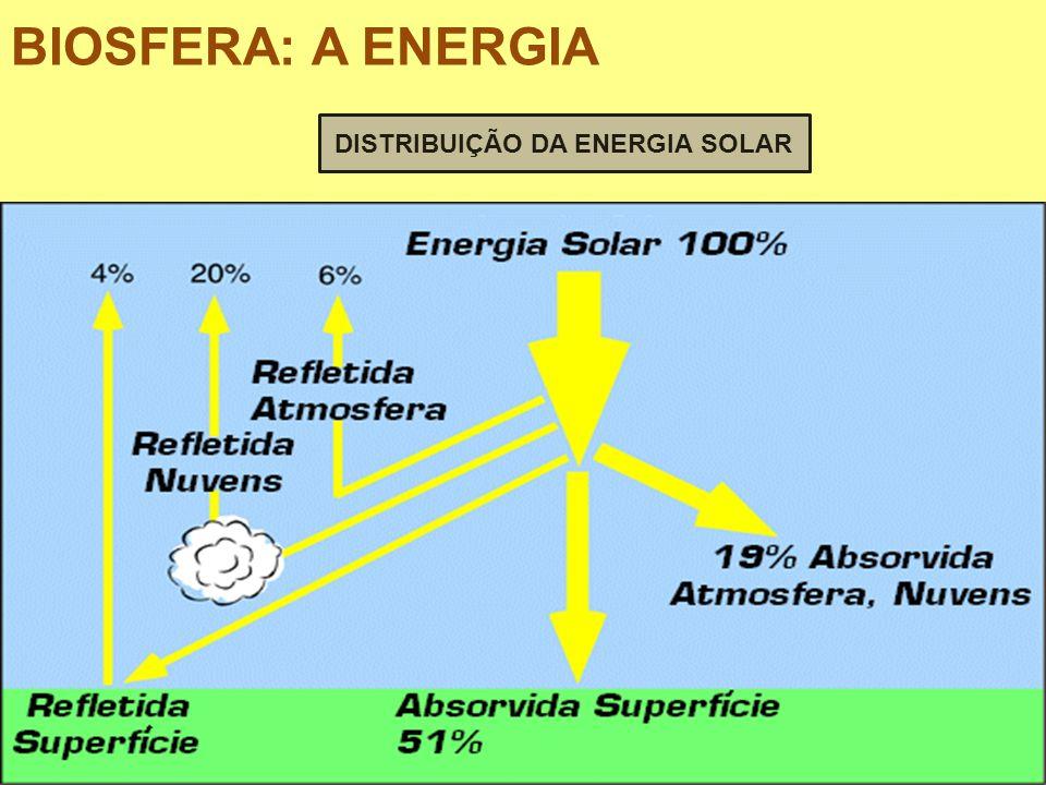DISTRIBUIÇÃO DA ENERGIA SOLAR BIOSFERA: A ENERGIA
