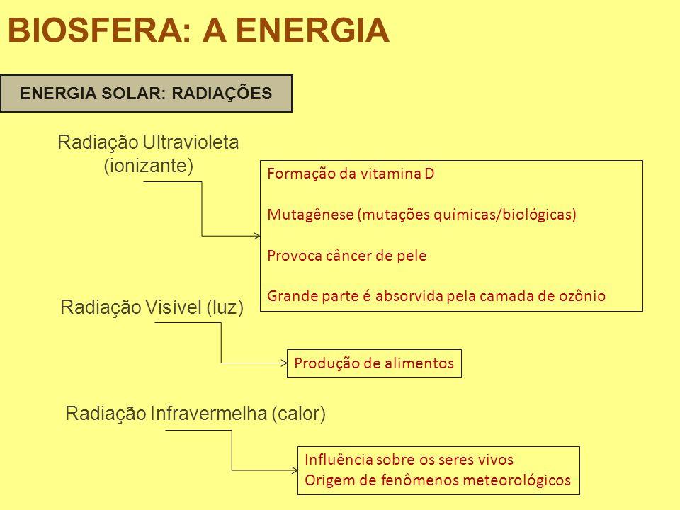 Radiação Ultravioleta (ionizante) Formação da vitamina D Mutagênese (mutações químicas/biológicas) Provoca câncer de pele Grande parte é absorvida pel