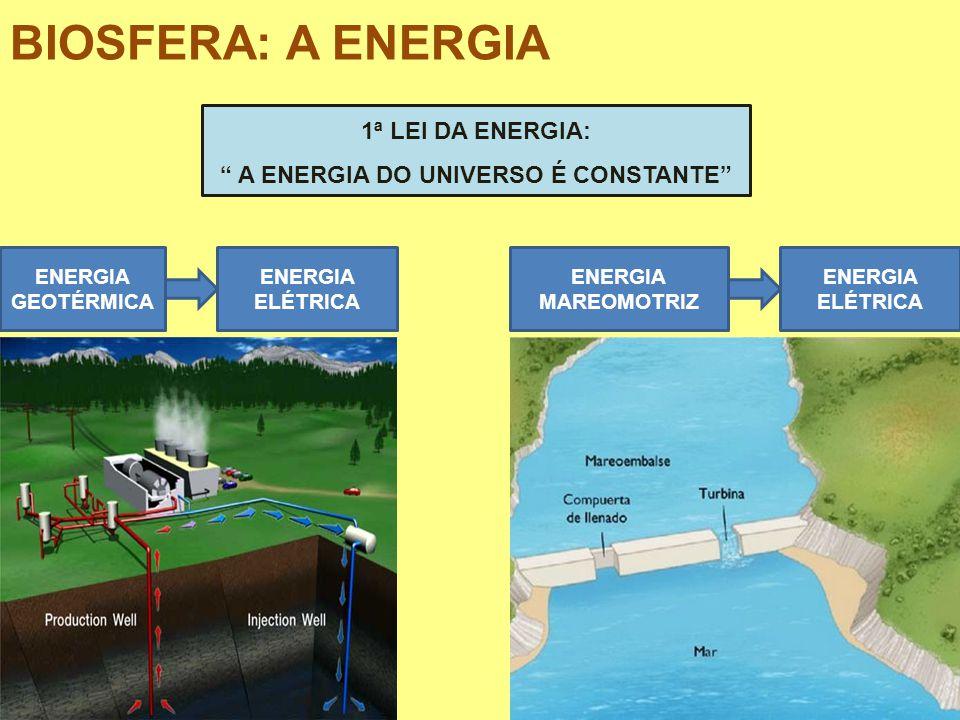 BIOSFERA: A ENERGIA 1ª LEI DA ENERGIA: A ENERGIA DO UNIVERSO É CONSTANTE ENERGIA GEOTÉRMICA ENERGIA ELÉTRICA ENERGIA MAREOMOTRIZ ENERGIA ELÉTRICA